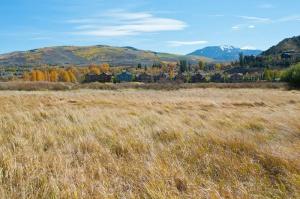Brett Ranch Wetland View